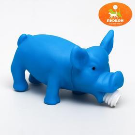 """Игрушка хрюкающая """"Веселая свинья"""", 15 см микс цветов"""