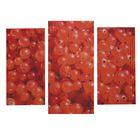 """Модульная картина на подрамнике """"Ягодки смородинки"""", 1 шт. — 60×30, 2 шт. — 50×25, 80×60 см"""