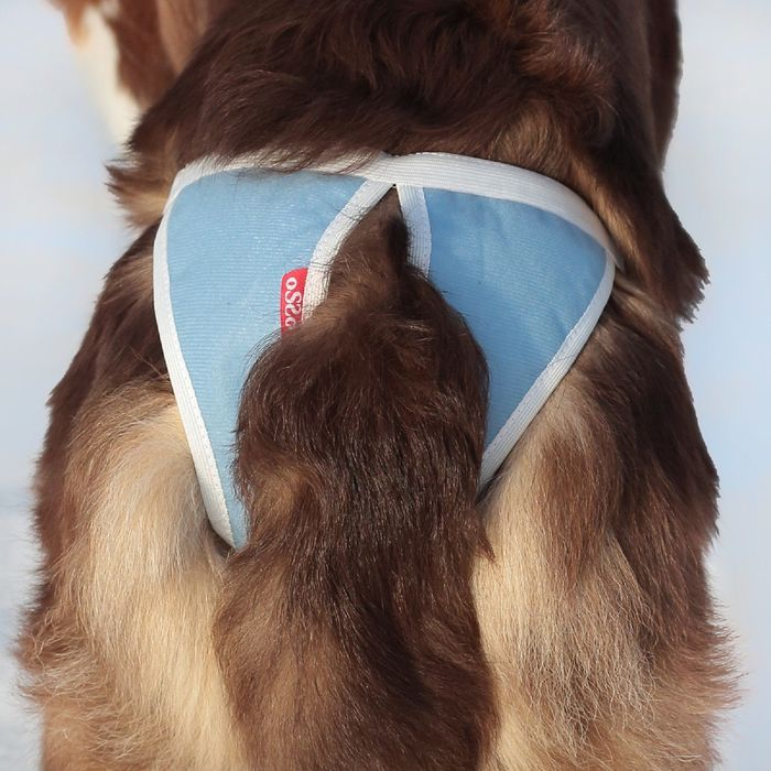 Трусы для собак многоразовые OSSO ABSORB, размер L