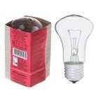 Лампа накаливания М50, 95 Вт, E27, 230 В, КЭЛЗ