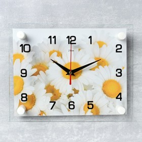 Часы настенные прямоугольные 'Ромашки', 20х26 см Ош