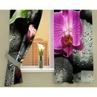 "Фотошторы кухонные ""Орхидея на камнях"", размер 145х160 см-2 шт, габардин 00209"
