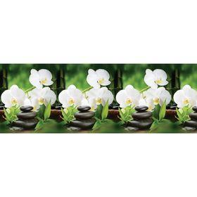 Кухонный фартук ПВХ Орхидея белая 3000х600х1,5