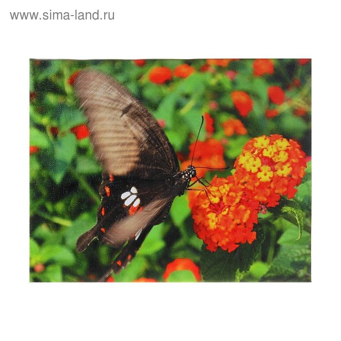 """Световая картина """"Бабочка на цветке"""""""