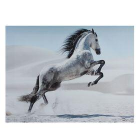 Картина на подрамнике 'Серая лошадь в прыжке' Ош