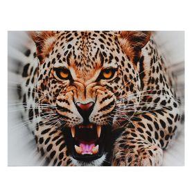 Картина на подрамнике 'Нападение леопарда' Ош