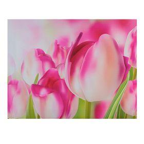 Картина на подрамнике 'Розовые тюльпаны' Ош