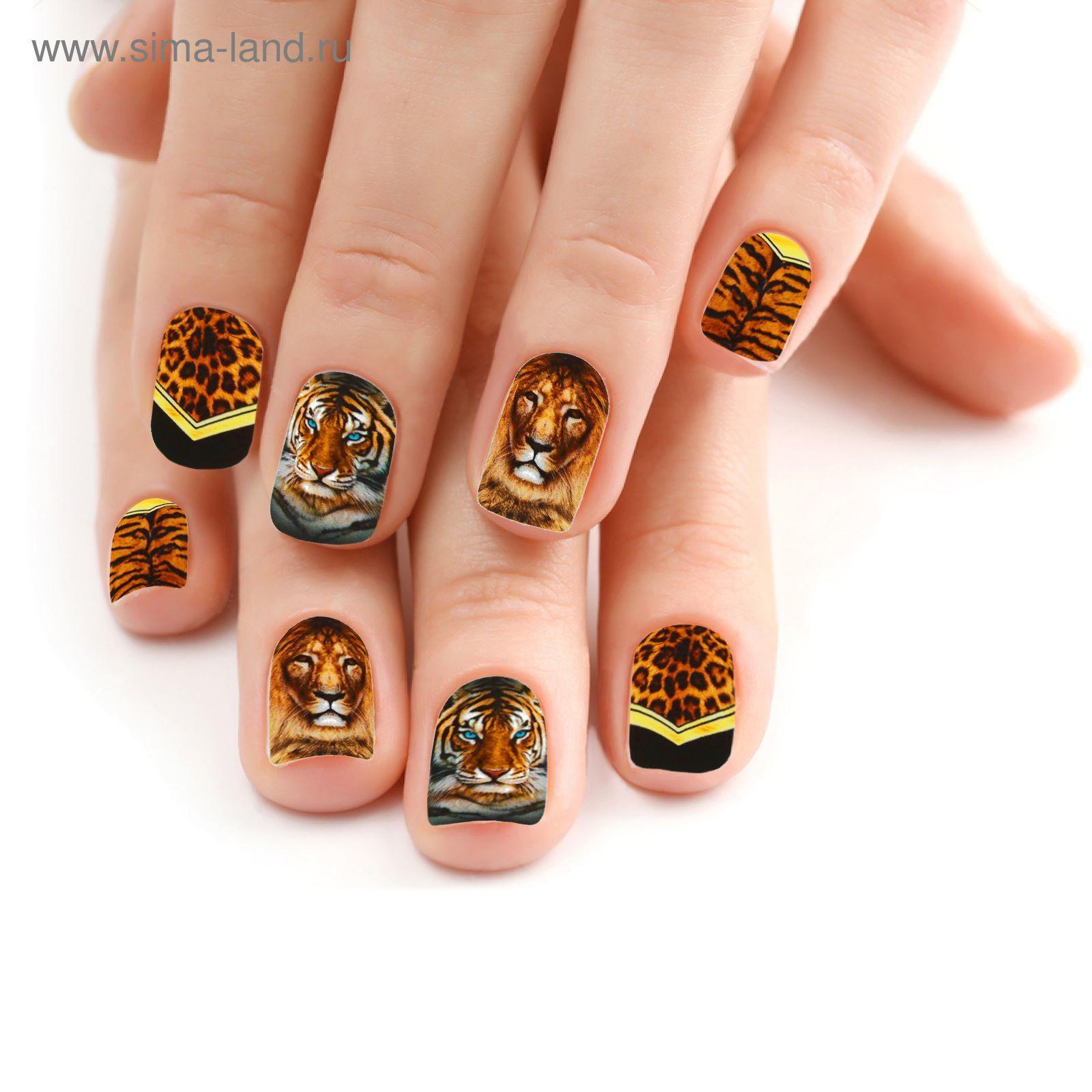 51a01e557fa7 слайдер дизайн для ногтей купить оптом - Тюменский издательский дом