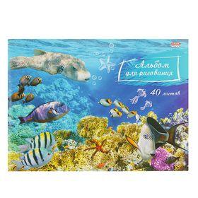 Альбом для рисования А5, 40 листов на скрепке 'Разноцветные рыбы', картонная обложка, блок офсет 100г/м2 Ош