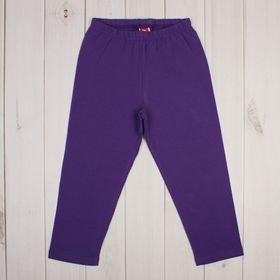 Бриджи для девочки, рост 158 см, цвет фиолетовый CSJ 7574