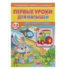 Первые уроки для малышей 2-3 года с наклейками. Мир вокруг меня