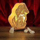 """Соляной светильник """"Собака"""" большой 19 х 16 х 6 см, деревянный декор, цельный кристалл"""