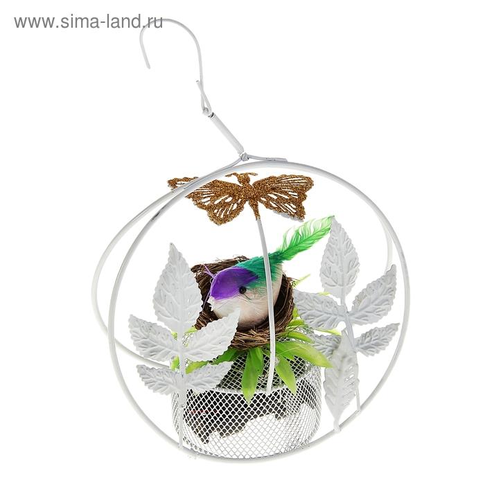 """Сувенир музыкальный """"Птенец в гнезде"""", с бабочкой, световой"""