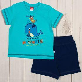 Комплект для мальчика (футболка, шорты), рост 80 см, цвет бирюзовый CSB 9644_М
