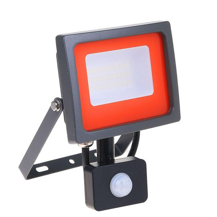 Прожектор светодиодный Jazzway, 30 Вт, 6500 K, IP54, с датчиком движения, PFL-SC