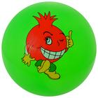 """Мяч детский """"Ассорти"""" d=22 см, 60 гр, цвета микс"""