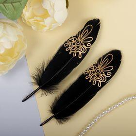Набор перьев для декора, 2 шт.