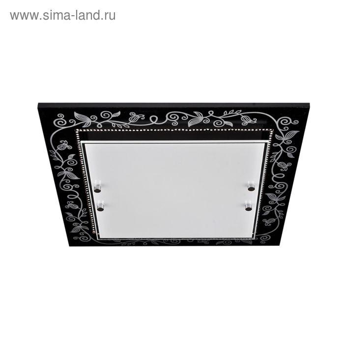 "Люстра настенно-потолочная ""Алессия"" 2 лампы E27 60Вт черный-серебро 35х35х8 см."