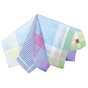 Набор женских носовых платков в пакете (12шт) ЭТНИКА, Арт.45471л, 28х28, х/б