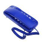 Проводной телефон RITMIX RT-100, настольно-настенный, Hi-Low, световой индикацией, голубой
