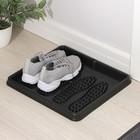Лоток для обуви, 43х39 см, цвет черный