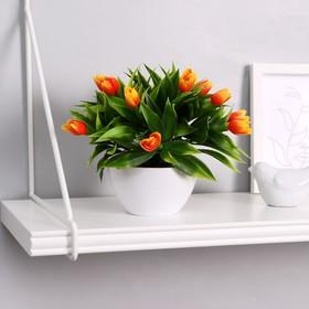 Бонсай 14*16 см с тюльпанами микс