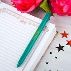 Ручка пластик зеленая «Липецк», 13,7 см