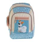 Рюкзак школьный эргономичная спинка для девочки Proff 37.5*28.5*17.3 «Тайная жизнь домашних животных», голубой PT17-BPA-07