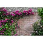 Фотосетка «Кирпичная стена», 300 х 158 см, с фотопечатью