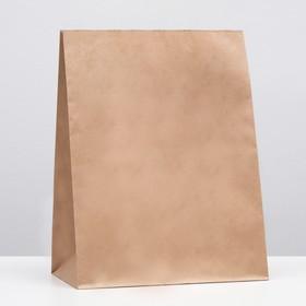 Пакет крафт бумажный фасовочный, прямоугольное дно 26 х 15 х 34 см Ош