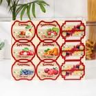 Набор цветных этикеток для домашних заготовок из ягод и фруктов 6,4 х 5,2см