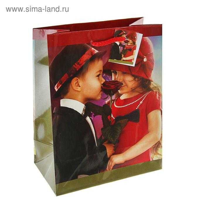 """Пакет подарочный """"Леди и джентельмены"""", 23 х 18 х 10 см"""