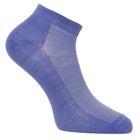 Носки женские Fw-11-S-7 цвет голубой, р-р 23-25