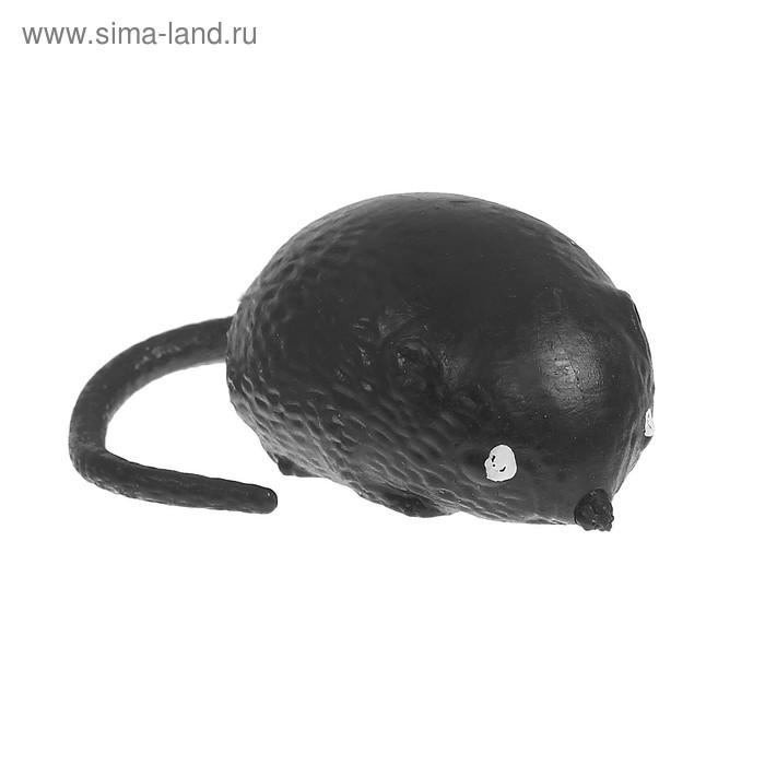 """Мялка с водой """"Мышь"""", цвет чёрный"""