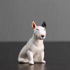 Статуэтка фарфоровая «Бультерьер черное ухо», 10 см, авторская роспись