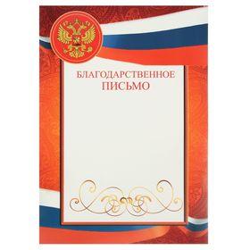 Благодарственное письмо 'Универсальное' флаг России Ош