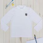 """Джемпер для мальчика """"День знаний"""", рост 146 см (76), цвет белый ПДД646804"""