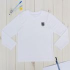 """Джемпер для мальчика """"День знаний"""", рост 122 см (62), цвет белый ПДД236804"""