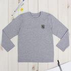 """Джемпер для мальчика """"День знаний"""", рост 128 см (64), цвет серый ПДД236809"""