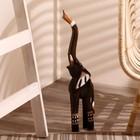 """Сувенир дерево """"Слон с цветком на спине"""" 60х15х7 см"""