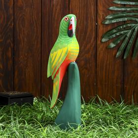 "Сувенир дерево ""Попугай"" 30х9х7 см"