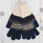 """Перчатки одинарные мужские """"Аскет 2"""", размер 20, цвет тёмно-синий/бежевый 2с230"""