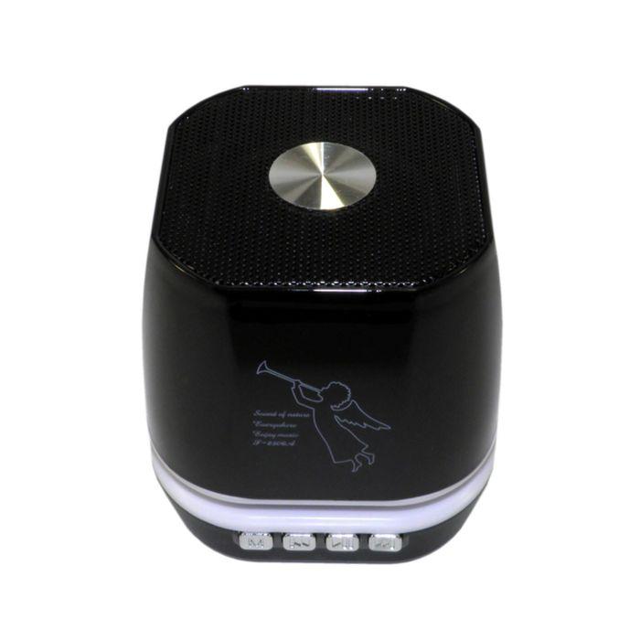 Портативная акустика Model-T2306, Bluetooth, USB, micro SD, FM, черная