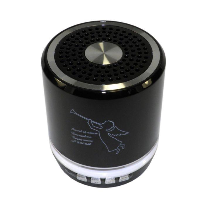 Портативная акустика Model-T2308, Bluetooth, USB, micro SD, FM, черная