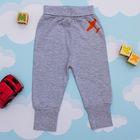 Штанишки для мальчика, рост 62 см, цвет серый меланж 1029_М