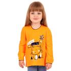 """Джемпер для девочки """"Мурлыка"""", рост 98 см (52), цвет оранжевый, принт кот ДДД041067"""