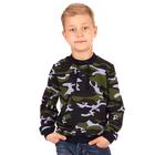 """Джемпер для мальчика """"Хищники"""", рост 116 см (60), цвет камуфляж ПДД397858н"""