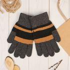 """Перчатки шерстяные мужские """"Юклид"""", размер 22"""
