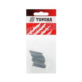 Гвозди финишные TUNDRA krep, 1.6х30 мм, оцинкованные, 20 шт. Ош