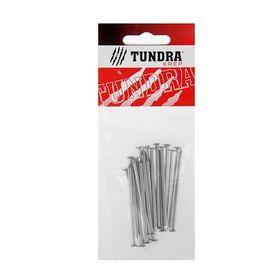 Гвоздь строительный TUNDRA krep, 2.5х60 мм, оцинкованный, в упаковке 20 шт. Ош